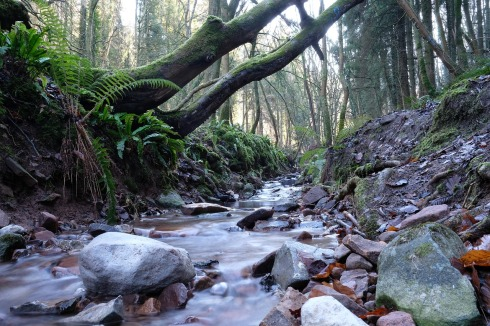 stream-1973015_1280