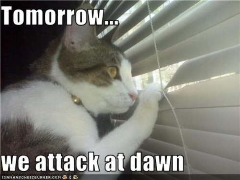 attackatdawn